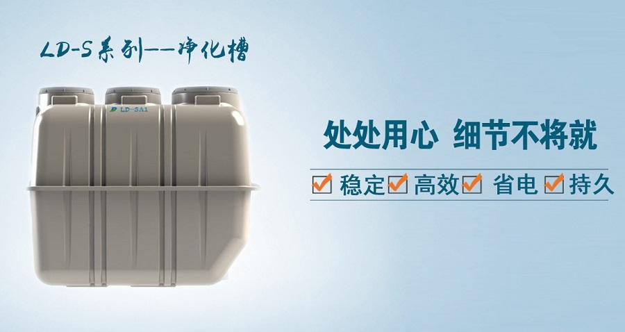 高效LD-SA 小型净化槽厂家直供