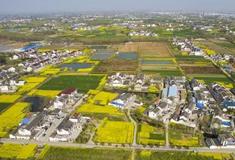 """百强镇""""扬州仙女镇""""农村污水处理案例"""